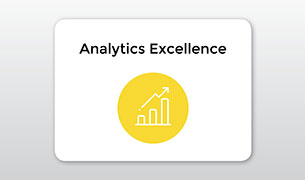 Analytics Excellence