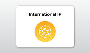 International IP