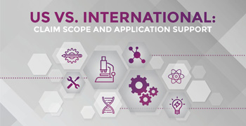 Claim Scope & Application Support